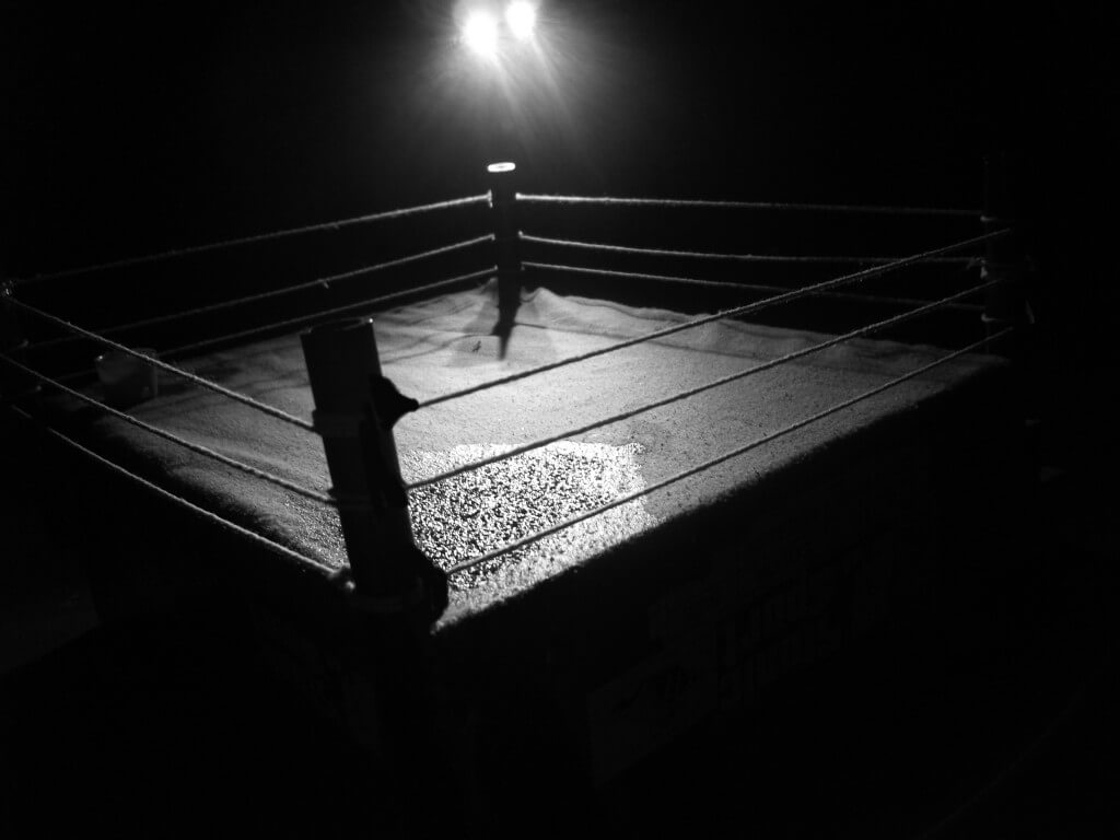 boxing ring 2